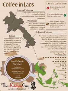 Laos Coffee Infographic - The Kitchen Guy Version
