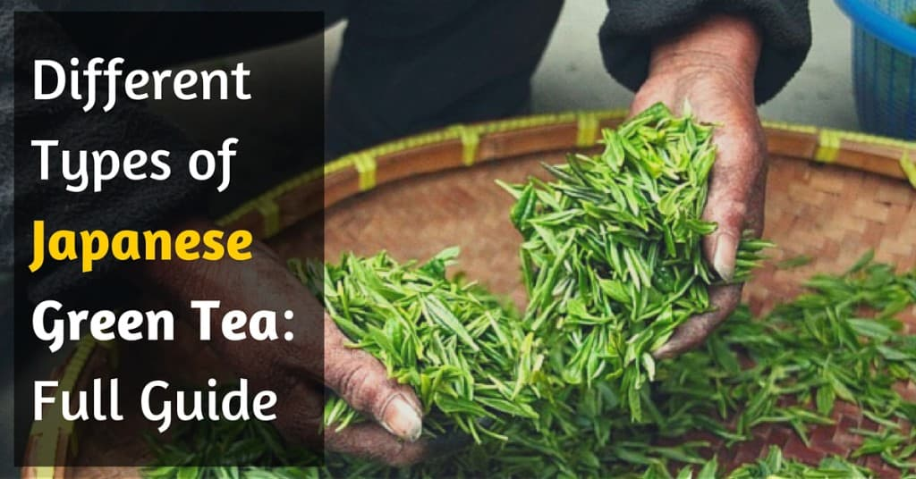 Types of Japanese Green Tea: Extensive Guide 2