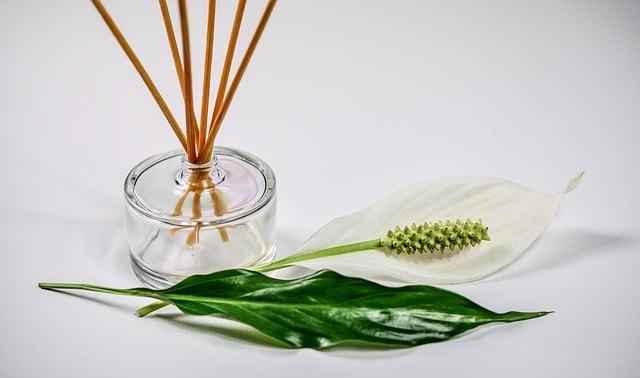 Green tea has over 200 fragrances