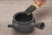Types of Japanese Green Tea: Extensive Guide 1